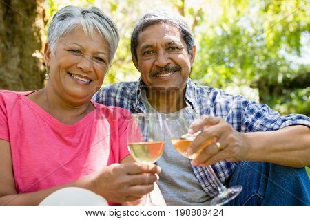 Portrait of senior couple toasting wine glasses at the park