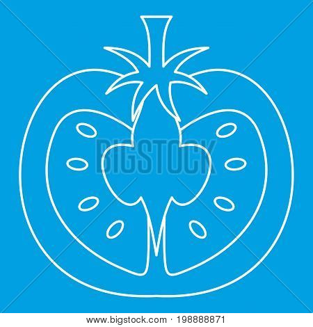 Tomato icon blue outline style isolated vector illustration. Thin line sign