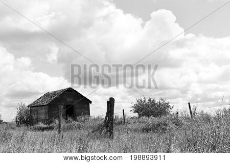 A black and white image of old run down granaries in a hay field.