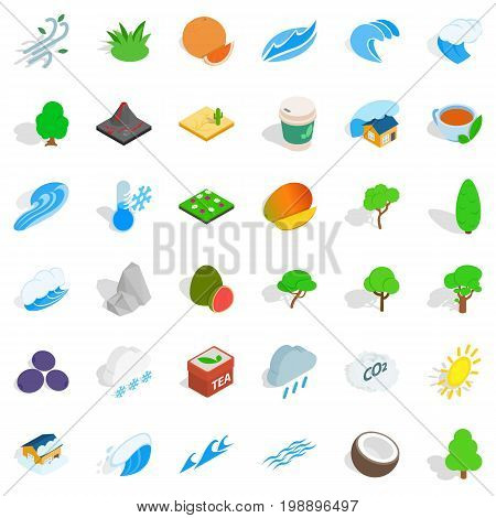 Leaf tree icons set. Isometric style of 36 leaf tree vector icons for web isolated on white background