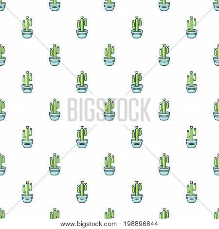 Saguaro cactus pattern in cartoon style. Seamless pattern vector illustration