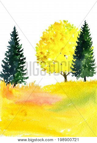 watercolor autumn landscape with deciduous trees, firs and grass, abstract nature background, forest template, yellow and red foliage and plants, hand drawn illustration