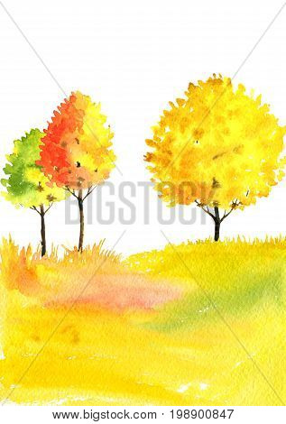 watercolor autumn landscape with deciduous trees, bushes and grass, abstract nature background, forest template, yellow and red foliage and plants, hand drawn illustration