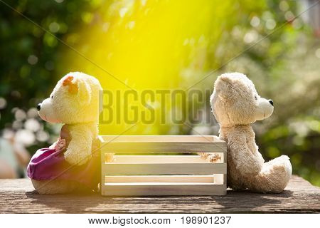 Two teddy bears feeling heartbroken sitting opposite a wooden box in the middle. Concept of love understanding and tenderness. With lens flare Natural background