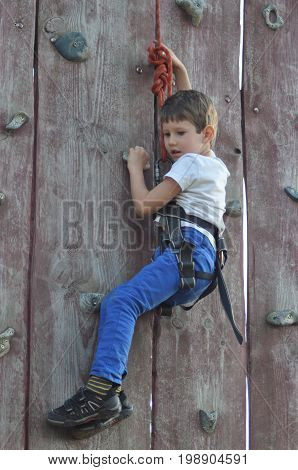 Boy climbing on the wall. Mountaineer in the harness.