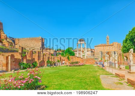 Archaeological And Historical Objects In Rome, United By The Name - Roman Forum And Palatine Hill. T
