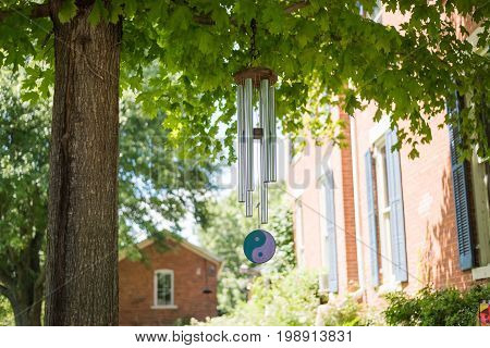Wind Chime On A Tree In A Backyard