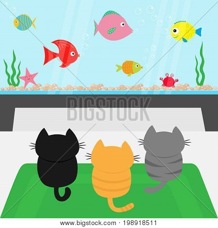 Three kittens on carpet rug looking to big aquarium with fish set. Little cat family. Pet animal collection. Cute cartoon funny character. Flat design. White background Isolated Vector illustration
