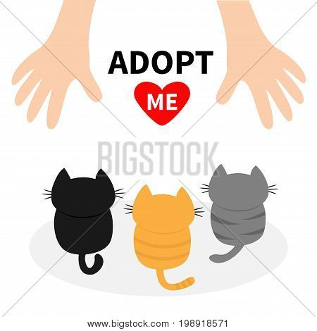Adopt me. Three kittens looking up to human hand. Cute cartoon funny character. Animal hug. Helping hands concept. Red heart. Love card Flat design White background Isolated Vector illustration
