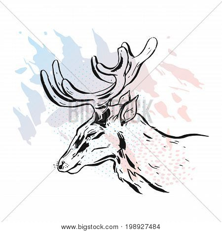 Hand drawn vector abstract textured lined ink graphic deer head illustration in pastel colors isolated on white background.
