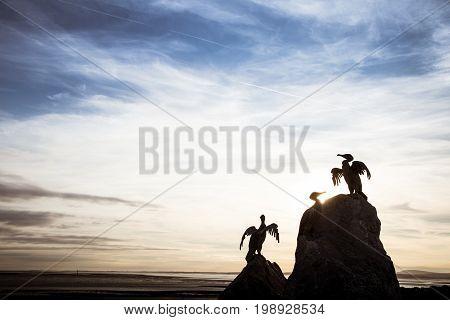A Beautiful Bird Statues On The Morecambe Coast