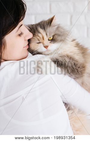 Close up of young woman tenderly holds her fluffy cat in hands. Charming family pets and people's love to them