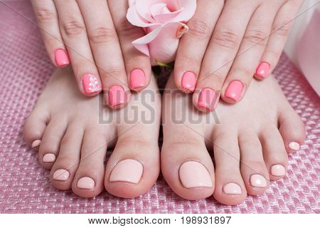 Hands with manicure, feets with pedicure. Female hands and feet on pink background top view. Result of spa salon procedure