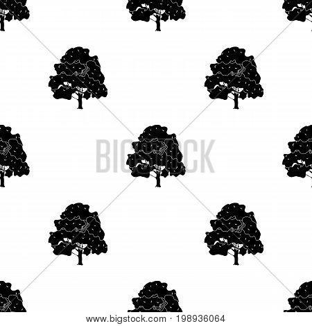 Canadian maple. Canada single icon in black style vector symbol stock illustration .
