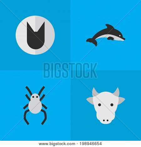 Elements Kine, Tarantula, Tomcat And Other Synonyms Cow, Milk And Spider.  Vector Illustration Set Of Simple Animals Icons.