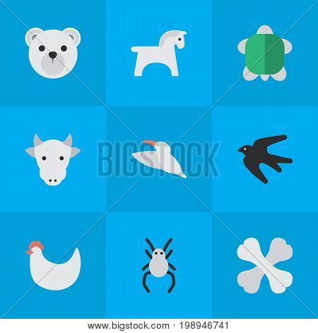 Elements Tarantula, Steed, Sparrow And Other Synonyms Sparrow, Hoof And Kine.  Vector Illustration Set Of Simple Fauna Icons.