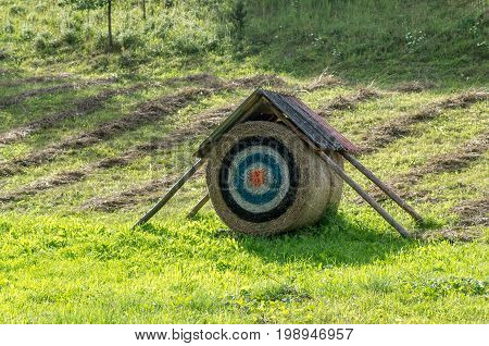 The target on the bale in field