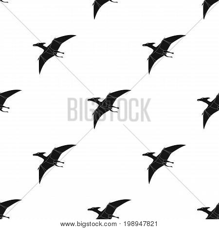 Dinosaur Pterodactyloidea icon in black design isolated on white background. Dinosaurs and prehistoric symbol stock vector illustration.