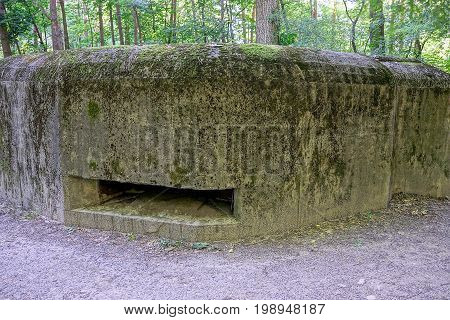 Old embrasure of a large concrete military pillbox in the forest