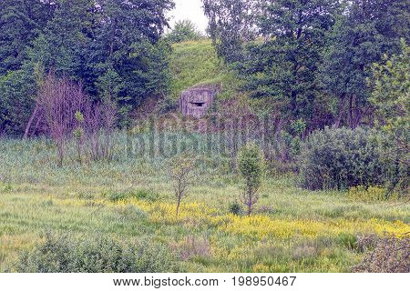 The old embrasure of the military pillbox on a hill with trees and grass