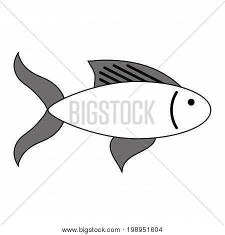 Flat line fish with a hint of color over white background vector illustration