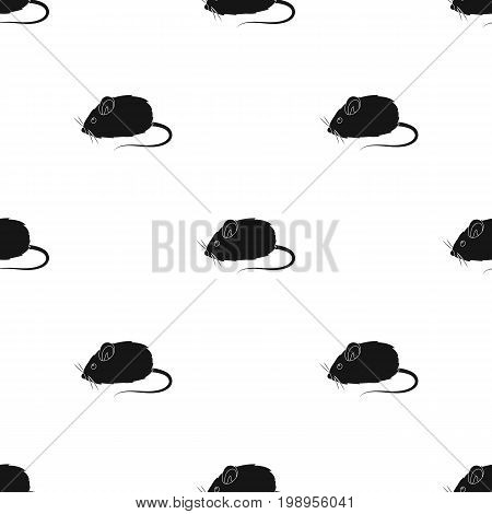 Mouse toy.Pet shop single icon in black style vector symbol stock illustration .