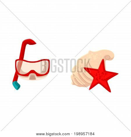 Snorkeling, scuba diving mask and sea shells, beach vacation objects, cartoon vector illustration isolated on white background. Cartoon scuba diving mask, breathing tube, star fish and sea shells