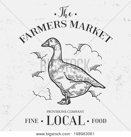 Goose, Duck Animal, Farmers Market Banner. Hand Drawn Sketch In A Graphic Style. Vintage Vector Engr
