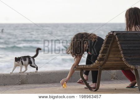 Girl gives a cat to drink in the summer heat