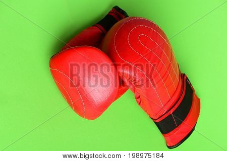 Professional Box And Strong Fight Concept. Pair Of Boxing Sportswear