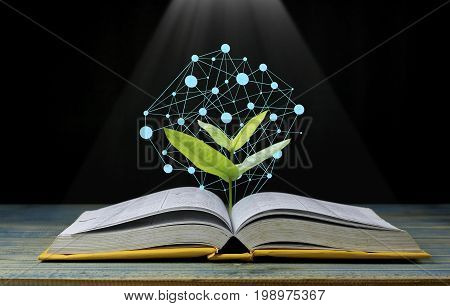 tree grow up from book with light shining as getting knowledge on black background concept as opening paper will see knowledge of the world learning by yourself and improve your life everywhere