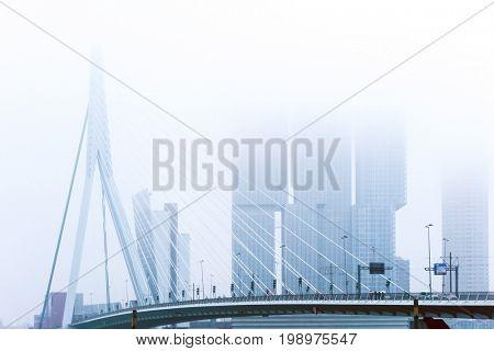 Erasmus bridge of Rotterdam City Netherlands