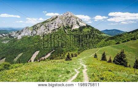 Stohove sedlo with mountain meadow isolated trees and hiking trail with rocky Velky Rozsutec hill in Krivanska Mala Fatra mountain range in Slovakia during nice day with blue sky and few clouds