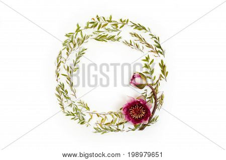 Floral Round Frame On White Background. Flat Lay, Top View. Ornament With Gray Grefsheim (spiraea Ci