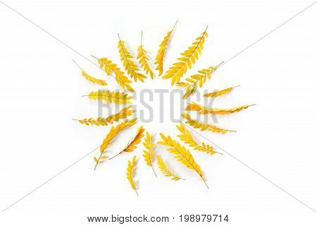 Round Frame Of Yellow Autumn Leaves On White Background. Flat Lay, Top View. Wreath Made Of Yellow A