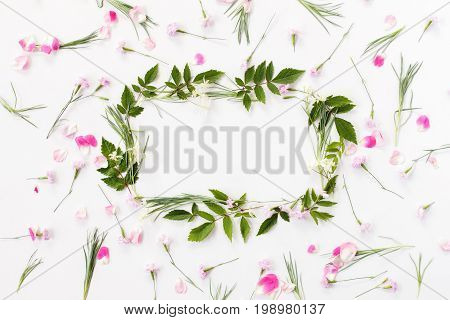Flowers Composition. Frame Made Of Pink Carnation Flowers, Rose Petals, Needle-shaped And Big Astilb