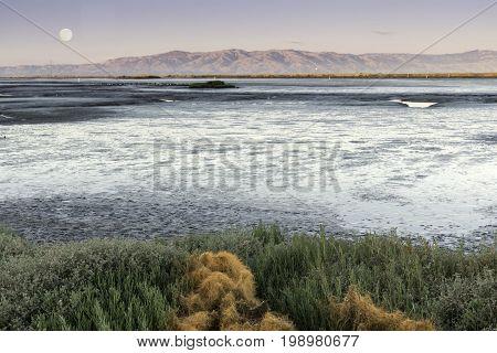 Mudflats of San Francisco Bay with full moon over Diablo Range. Santa Clara County, California, USA.