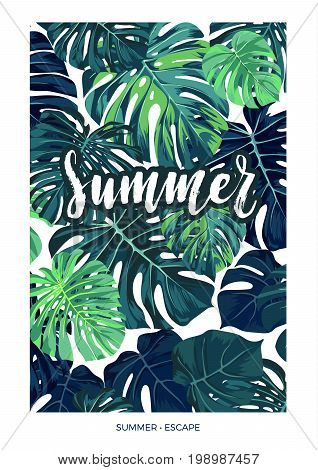 Summer tropical postcard design with green monstera palm leaves and lettering. Vector illustration.