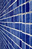 Blue tiles lining the wall of a swimming pool. poster
