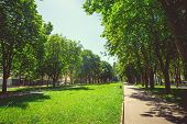 A deserted boulevard in the center of the city in bright sunny summer weather poster