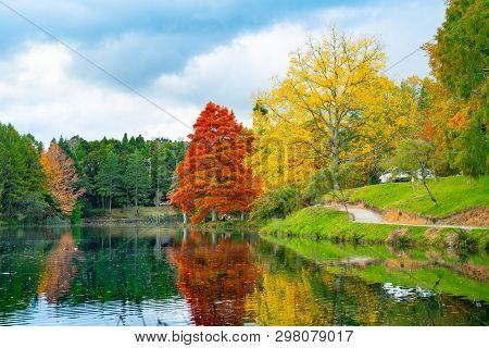 Tauranga New Zealand - April 27 2019; Late Afternoon Autumn Colours Over Lake At Mclaren Falls Park