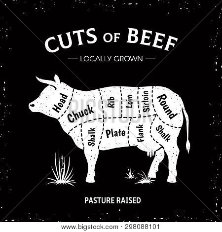 Butcher Cow Poster. White Beef Diagram, Cow Silhouette Vintage Logo, Restaurant Menu Beef Cut Templa