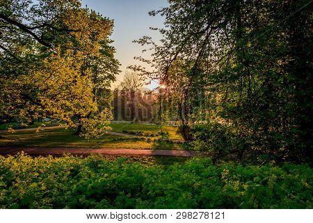 Spring Evening Park. Park At Sunset. Evening Sun Russian Park. Park In The Green. Urban Park. Evenin