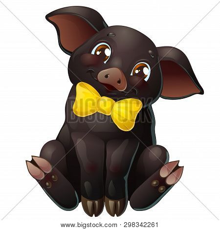 Cute Black Pig With Bow Sits On White