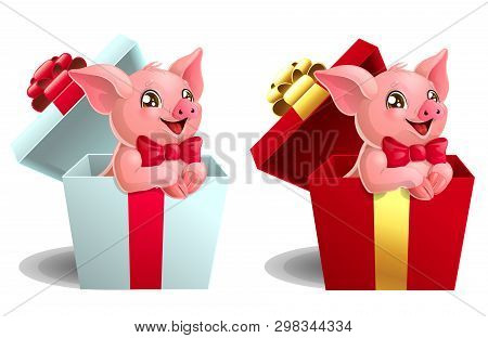 Set Lovely Pink Pig On White Or Red Box
