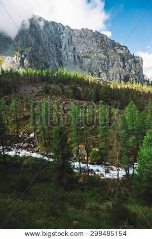Turquoise Water Stream Of Mountain Creek In Valley. Wonderful Mountain River And Conifer Forest Befo