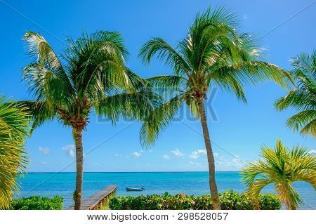 View Of The Caribbean Sea From A Room On South Hole Sound, Little Cayman, Cayman Islands