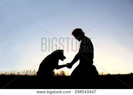 A Young Man Is Sitting Outside Training His Pet Dog, And Shaking Hands On A Summer Evening, Silhouet