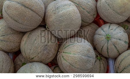 Melons On A Counter - Many Small Round Melons With Green Stripes On Rind.