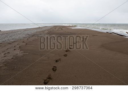 Nature Outdoors Point Pelee National Park Tip Footprints Sand